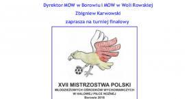 XVII Mistrzostwa Polski Młodzieżowych Ośrodków Wychowawczych w Halowej Piłce Nożnej