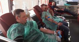 Oddając krew uczcili pamięć Żołnierzy Wyklętych
