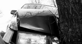 Samochód uderzył w drzewo – kierowca był pijany