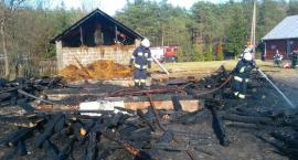 Pożar trzech budynków i trawy w Rudzie Tarnowskiej