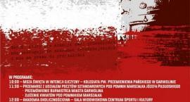 Wspólne świętowanie rocznicy odzyskania niepodległości w Garwolinie