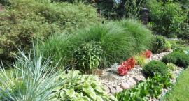 Konkurs na najpiękniejszy ogród w Garwolinie