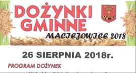 Dożynki gminne w Maciejowicach