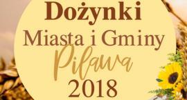 2 plus1 gwiazdą dożynek miasta i gminy Pilawa