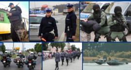 Praca w policji – Nowe terminy naborów