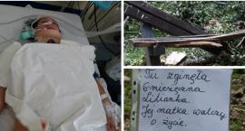 Drzewo przygniotło kobietę i niemowlę – Liliana nie żyje, Olga walczy o zdrowie