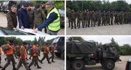 Żołnierze poszukiwali padłych dzików