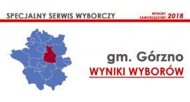 Nowi radni gminy Górzno wybrani – wyniki oficjalne