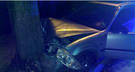 Wracał pijany z Sylwestra – uderzył w drzewo