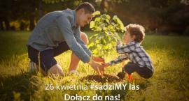 SadziMY z prezydentem Andrzejem Dudą – nadleśnictwo rozdaje sadzonki