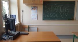 Nauczyciele zawieszają strajk – Do kiedy? Wyniki ankiety