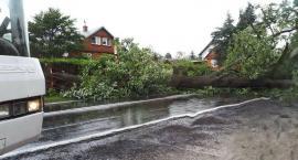 Powalone drzewa, uszkodzenia linii energetycznej i dachu