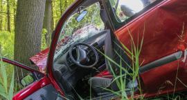 Pijany kierowca BMW uderzył w drzewo
