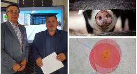 Uśmiercono ponad 130 świń – Likwidacja ognisk ASF w powiecie