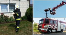 Mały bocian wypadł z gniazda – Pomogli strażacy