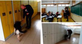 Policyjny pies do wykrywania narkotyków w szkole