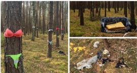 Bielizna na drzewach i kanapa – Dziwna akcja czy po prostu zaśmiecanie lasu?