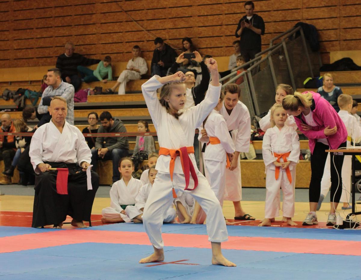 Sporty walki, Sukcesy karateków Gdańsku - zdjęcie, fotografia