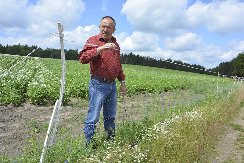 Grubsza sprawa, Rolnicy sądu myśliwymi - zdjęcie, fotografia