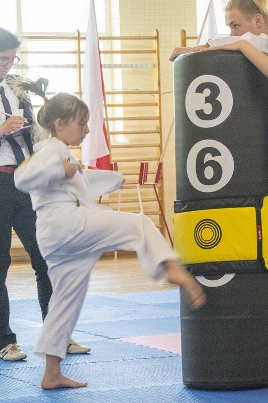 Sporty walki, Mistrzostwa Pomorza taekwondo - zdjęcie, fotografia