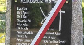 Odsłonięcie pomnika w Ostrowitem [FILM+GALERIA]