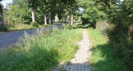 Zarośnięty chodnik z niespodziankami