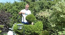 Trawnik dla ogrodu jak salon dla domu