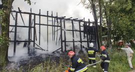 Groźny pożar w Grzmiącej. Foto