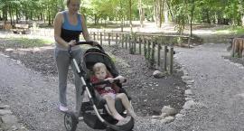 Glebogryzarką po parku