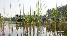 Gm. Bytów. Alarm dla jeziora Jeleń!