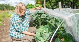 Ekologiczne warzywa z Baranowa