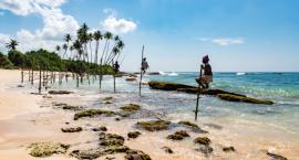 Sri Lanka - piękno świątyń i dzikości.