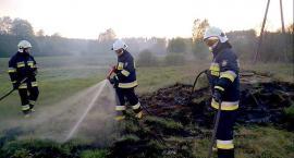 Ogień pustoszy lasy i pola