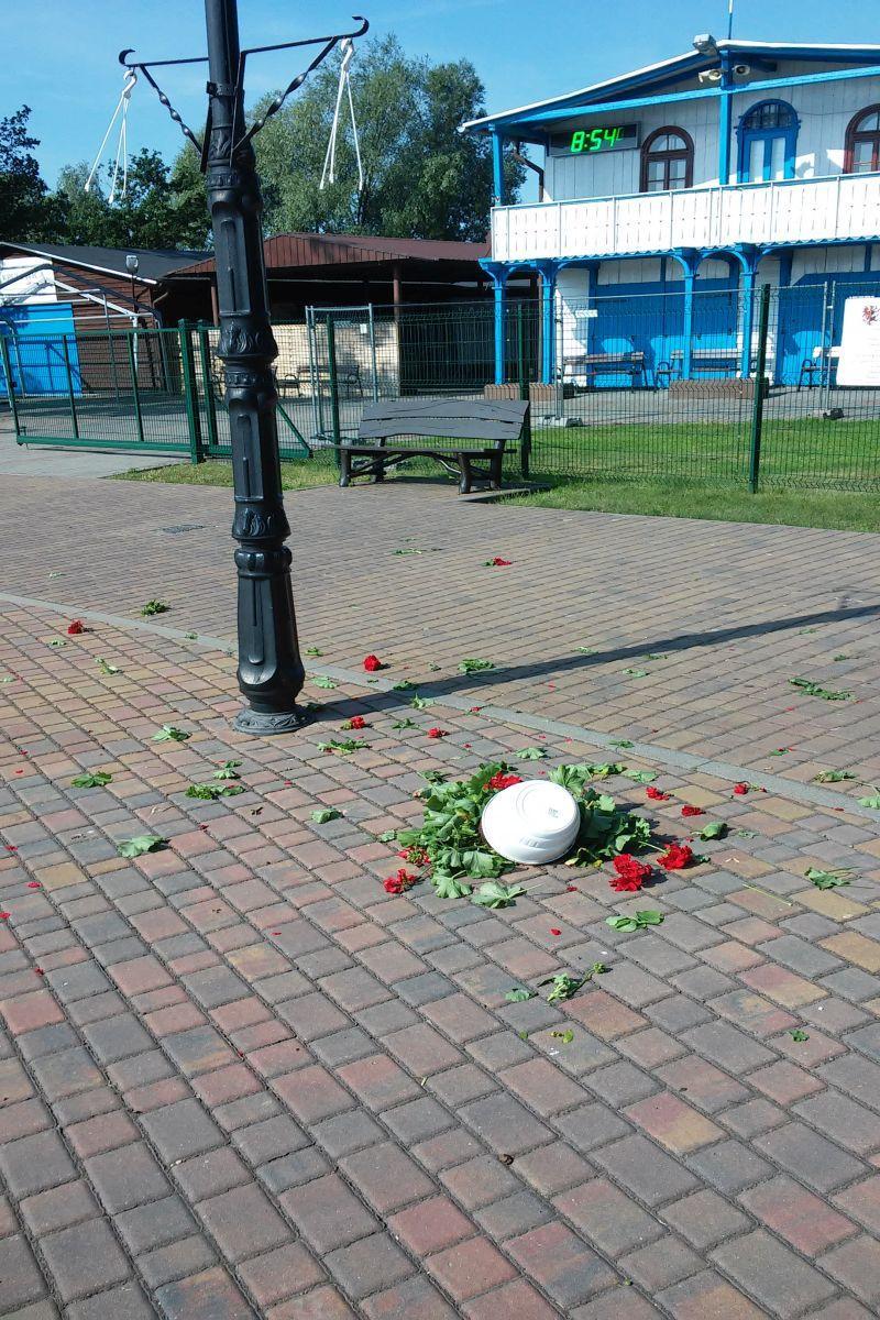 Region, Nie(winne) donice kwiatami - zdjęcie, fotografia