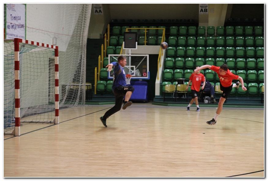 Piłka ręczna, Radę wygrywają Koroną - zdjęcie, fotografia