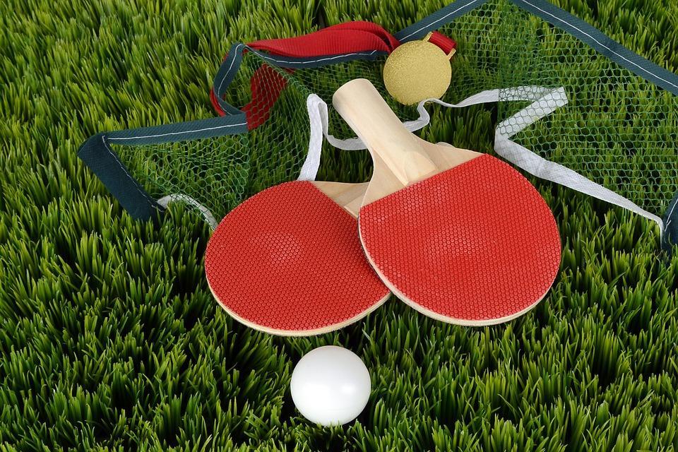 Tenis stołowy, Żaków Żaczek tenisie stołowym - zdjęcie, fotografia
