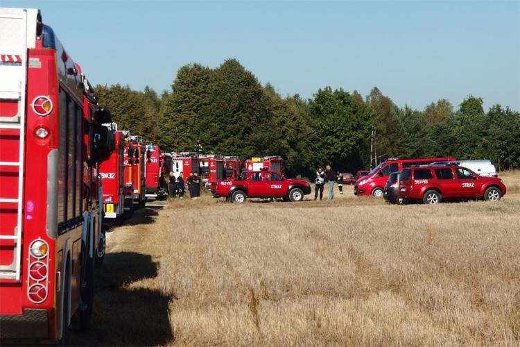 Komunikaty Policja, Wspólne ćwieczenia policji strażaków leśników - zdjęcie, fotografia