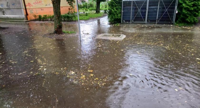 Społeczeństwo, Kolejny deszcz kolejne zalanie - zdjęcie, fotografia