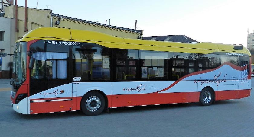 Samorząd, Autobus Niepodległej - zdjęcie, fotografia