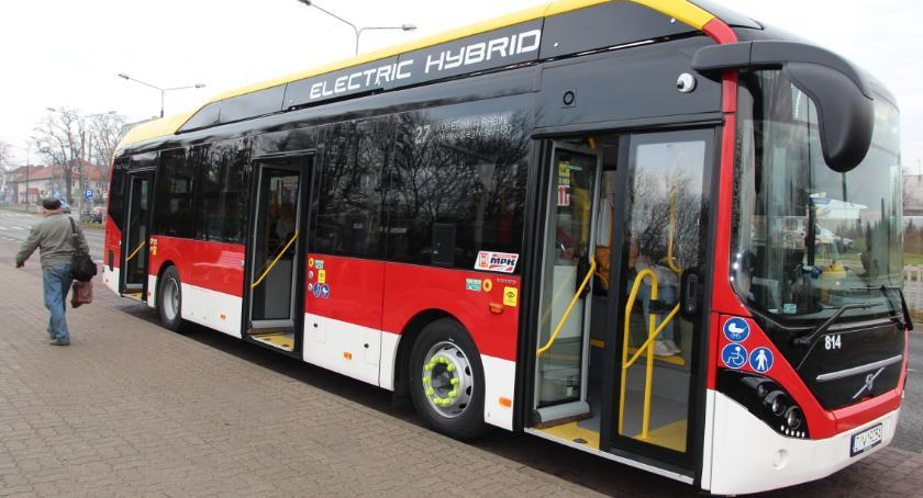 Samorząd, autobusy wyjechały ulice - zdjęcie, fotografia