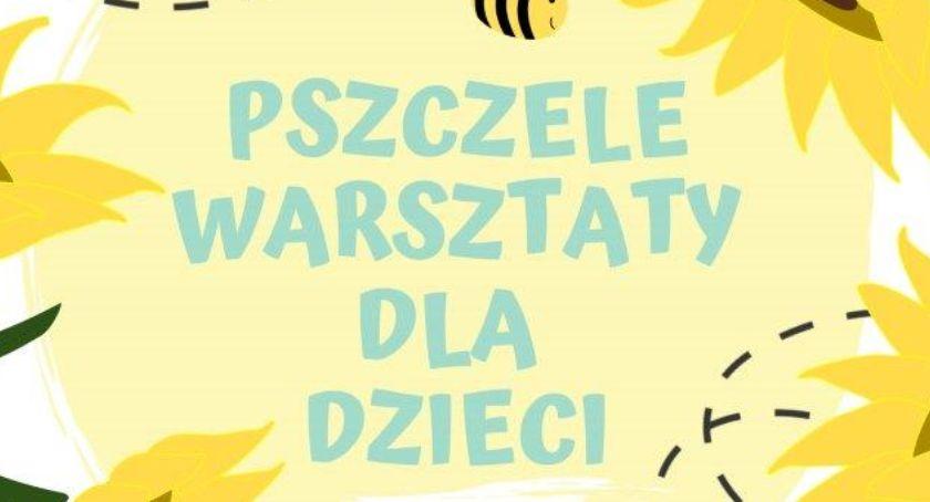 Cud miód – pszczele warsztaty dla dzieci