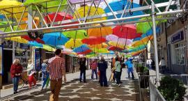 Parasolki już są na Królówce