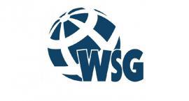 WSG wysoko w rankingu