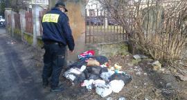 Ukarani za podrzucenie śmieci