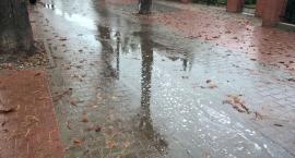Trochę pada na ulicy Kasztanowej...