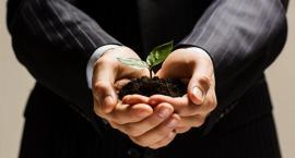 Banki z coraz korzystniejszą ofertą dla przedsiębiorców