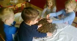 Kujawskie dzieci uzbierały górę grosza!