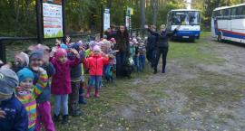 Kujawskie dzieci podziwiały jesienny las