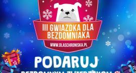 Bezdomne zwierzaki z Inowrocławia też chcą zasmakować Świąt