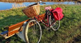 Wypożycz rower za pół ceny